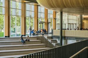 Así puedes ayudar a los demás si escoges cursos de arquitectura especializados